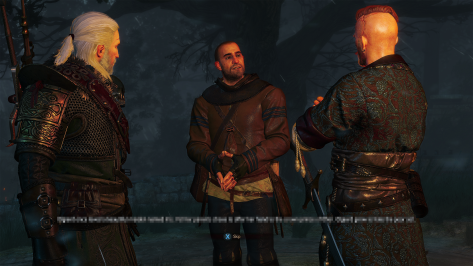 The_Witcher_3_Wild_Hunt_Hearts_of_Stone_Trust_me_after_all_mirrors_never_lie
